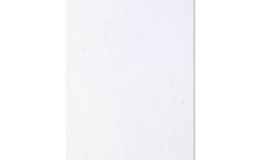 Wandplatte weiss matt 30x60 rett.